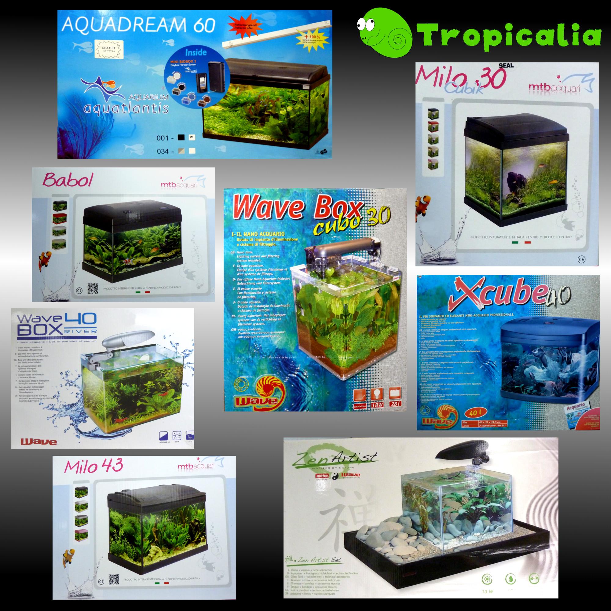 Tropicalia pagina 7 for Acquari nuovi in offerta