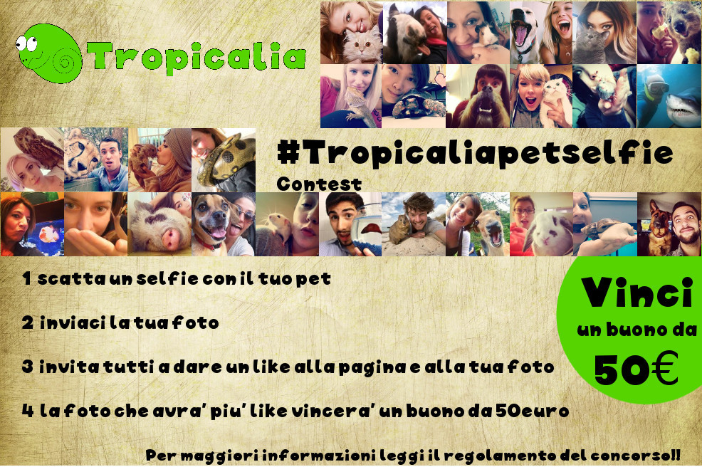 concorso_pet_selfie